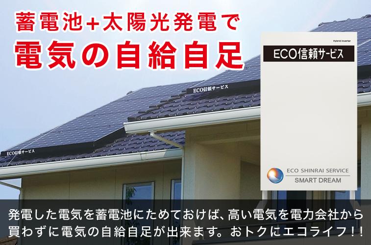 太陽光発電プラス蓄電池システム